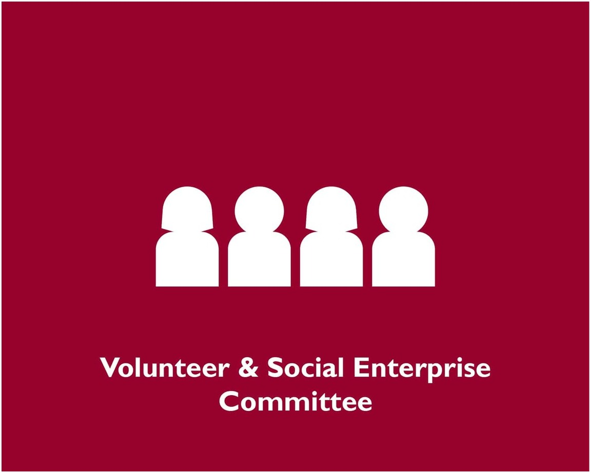 Volunteer & Social Enterprise Committee
